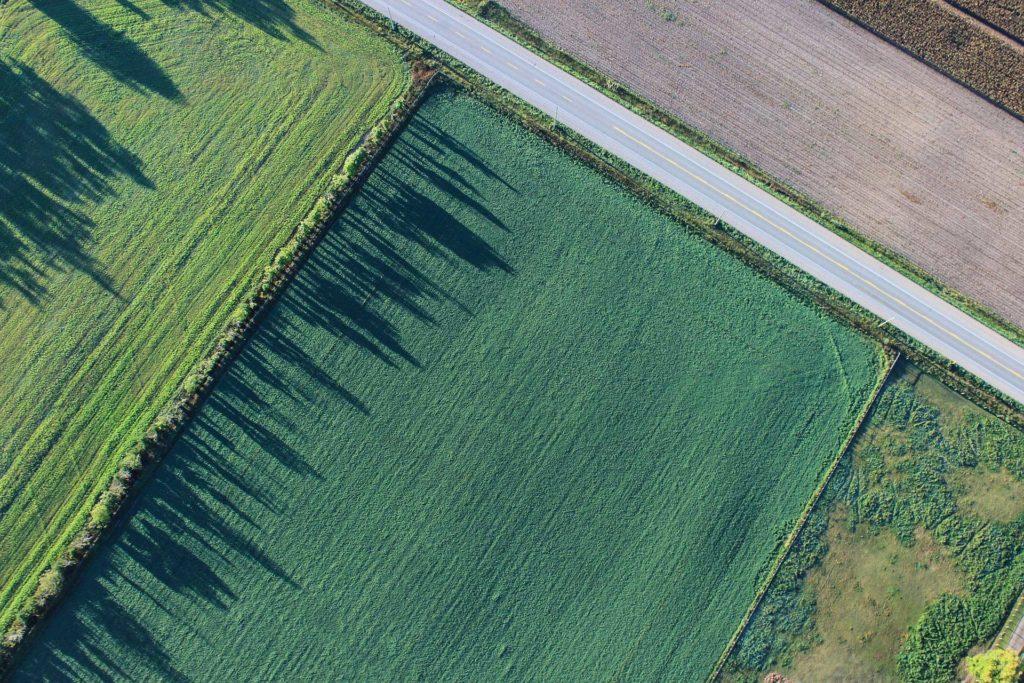agriculturaWebc-1024x683